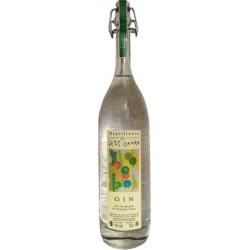 Distillerie du Petit Grain - Gin - 47 % vol - 50 cl - FR