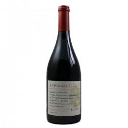 Rutini Wines - Antologia XLIII - Pinot Noir 2013 - Argentine
